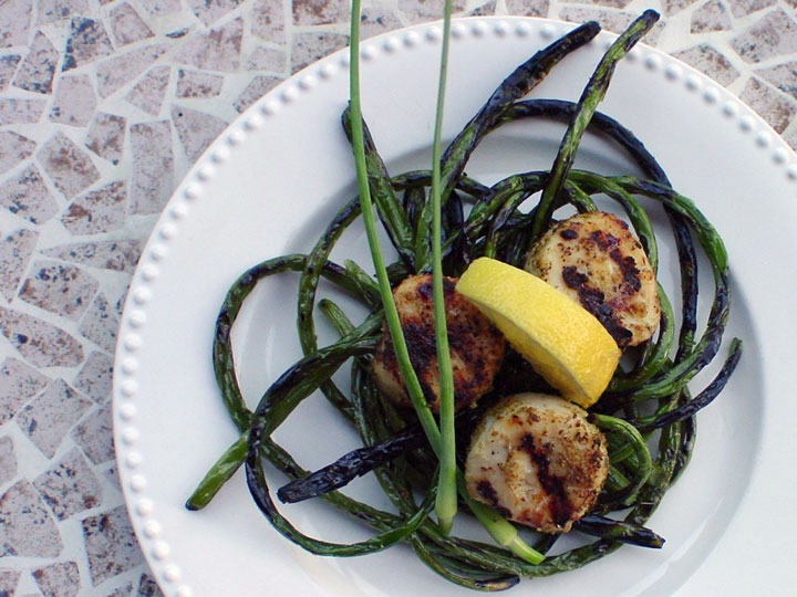 Scapes-&-Scallops