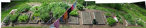 Garden-Pan-2
