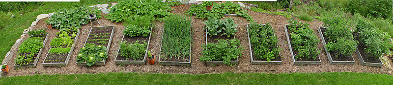 Garden-pan