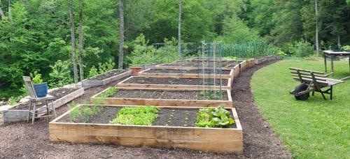 Garden-061109