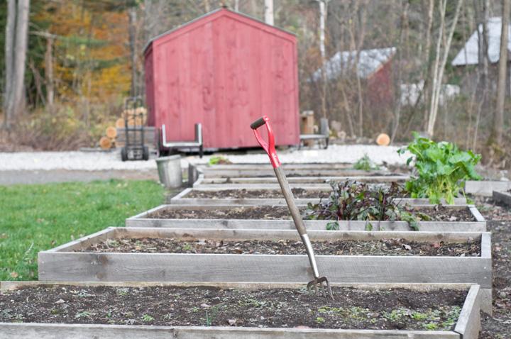 Empty-Garden