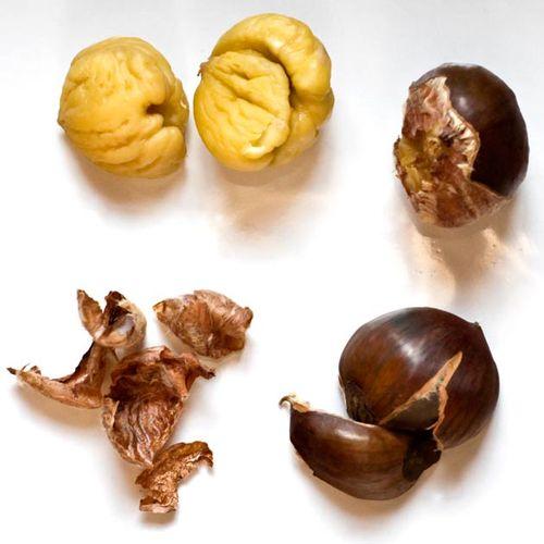 Chestnut-Parts