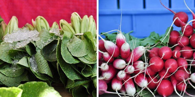 Bok-Choi-and-radishes