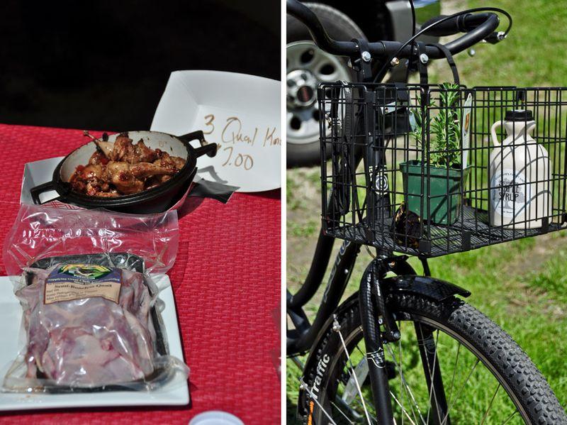 Quail-and-Bike
