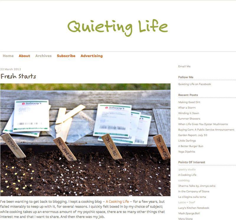 Q-Life-Screen-Shot
