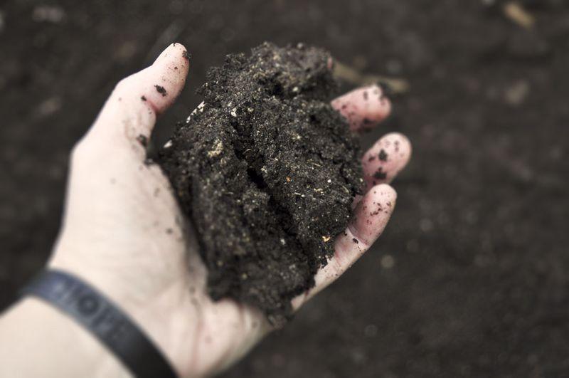 Handful-of-Dirt