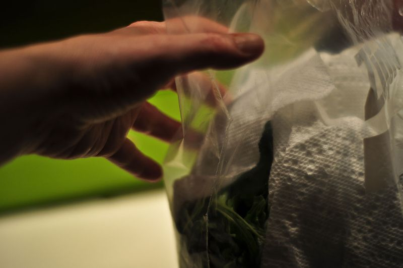 Salad-Green-4