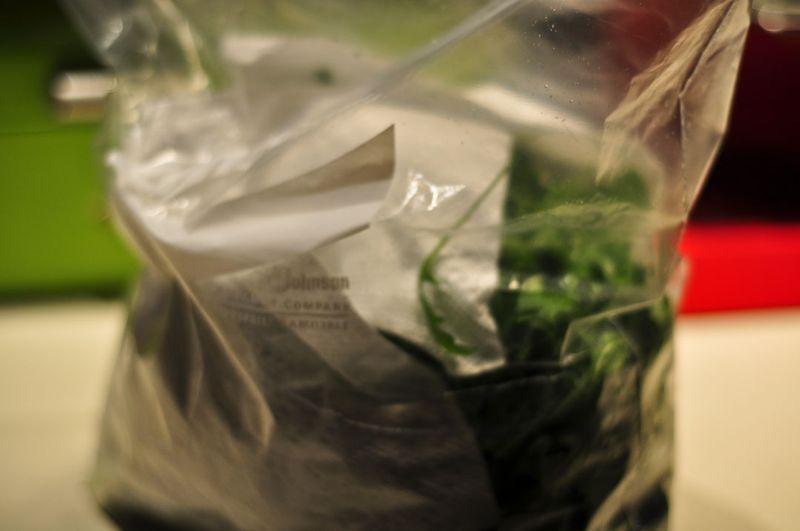 Salad-Greens-5