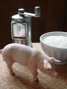 Pigsaltpepper